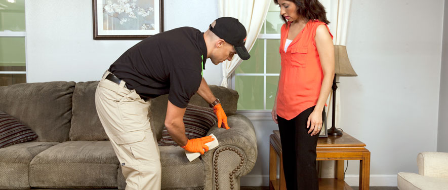 Wheaton, MD carpet upholstery cleaning