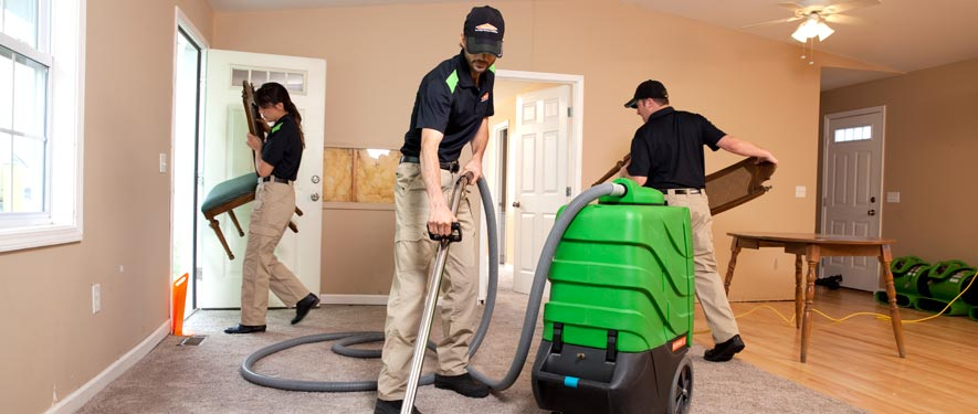 Wheaton, MD cleaning services